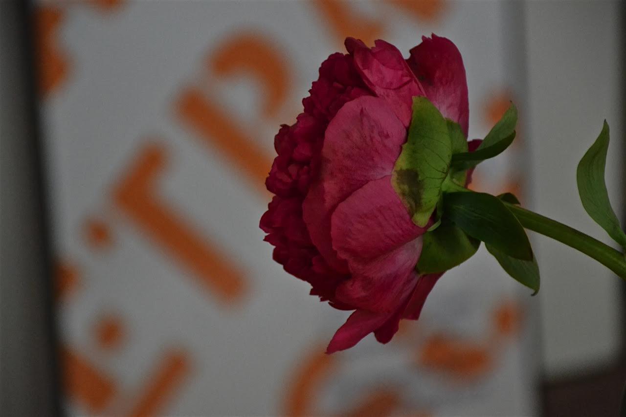 Ein Tag bei Suhrkamp: Bloggertreffen beim Suhrkamp Verlag